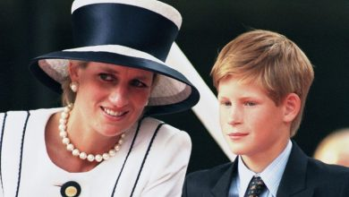 Photo of Why Prince Harry and Diana always went to McDonald's – and it wasn't because of the food